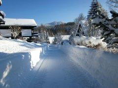Winterbilder2011_001.jpg